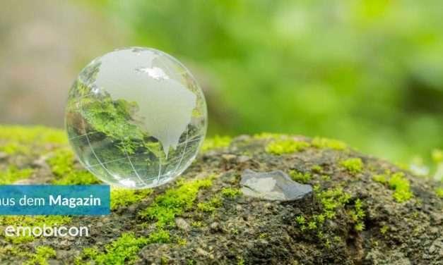 Erde: Wir haben unsere Ressourcen für 2021 bereits verbraucht